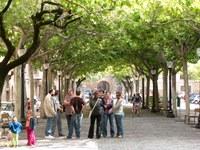 Imatge actual del passeig Pare Claret