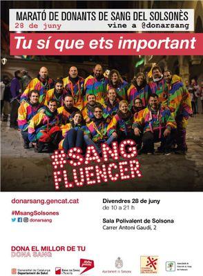 13a Marató de donació de sang del Solsonès