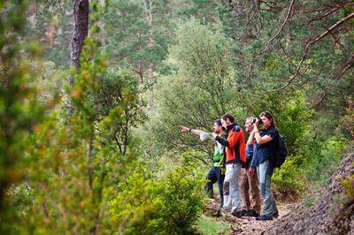 Ruta fins al Catellvell (Festival de Senderisme dels Pirineus)