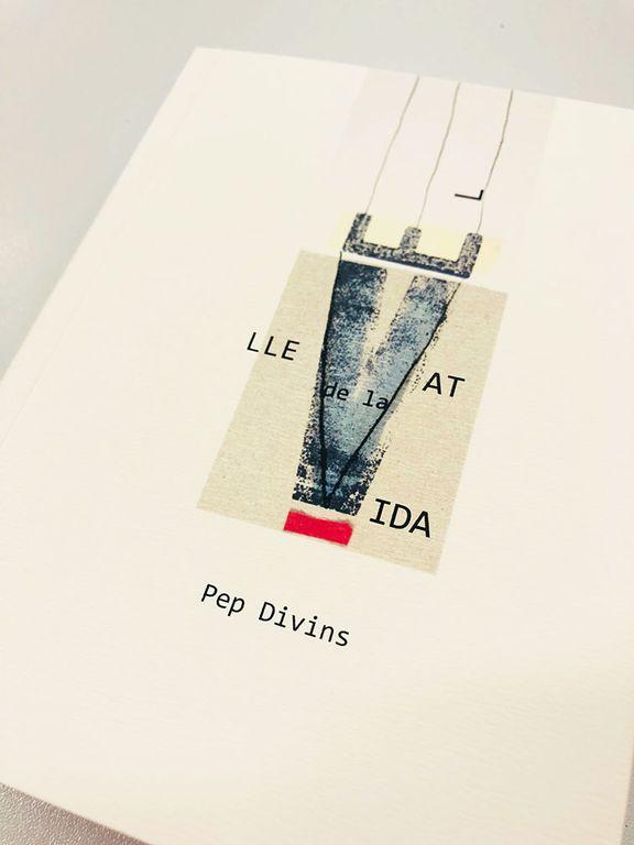 Espectacle artístic al Teatre Comarcal per presentar un llibre benèfic de Pep Divins