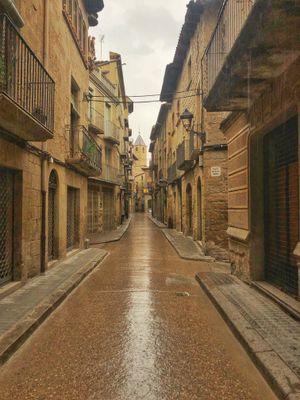 L'Ajuntament solsoní agraeix la resposta ciutadana a les mesures del confinament