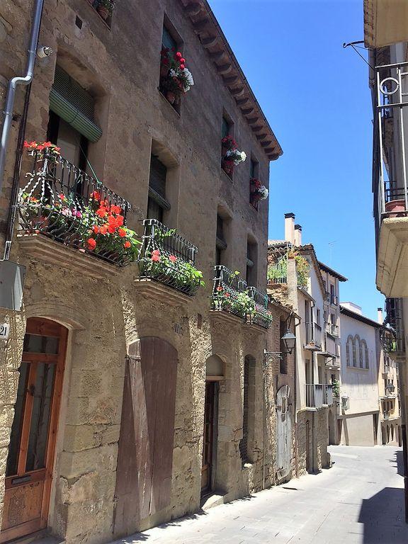 La regidoria de Cultura de Solsona convoca el 30è Concurs de flors als balcons, que repartirà 990 euros en premis