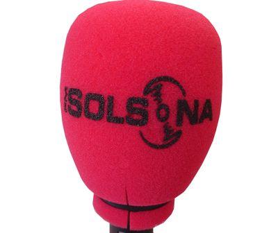 Solsona celebra aquest divendres la primera sessió del Consell Municipal de Comunicació del mandat