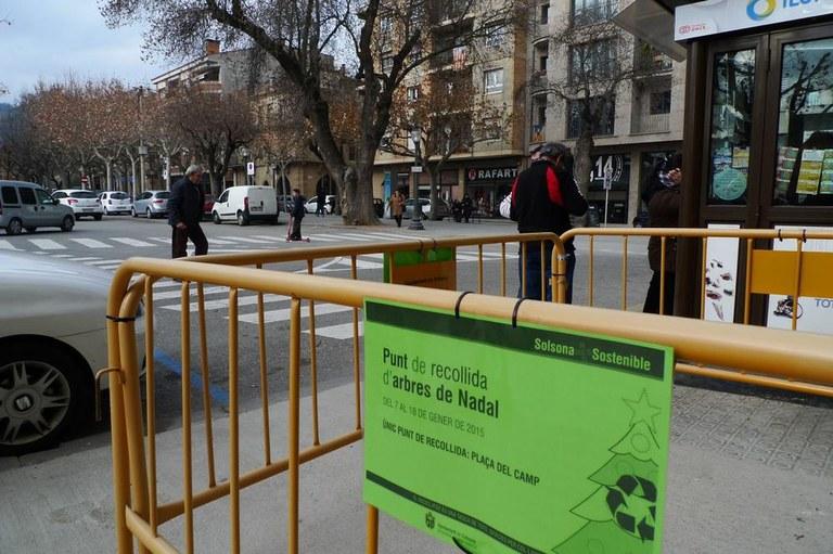 Solsona inicia la campanya de recollida d'arbres de Nadal per fer-ne compostatge
