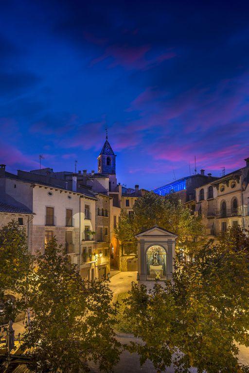 Substitueixen dos plataners malalts per aurons a la plaça de Sant Joan de Solsona